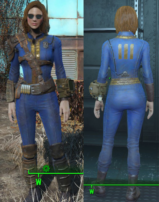 fallout 4 sole survivor
